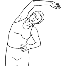 QL stretch for lower back pain