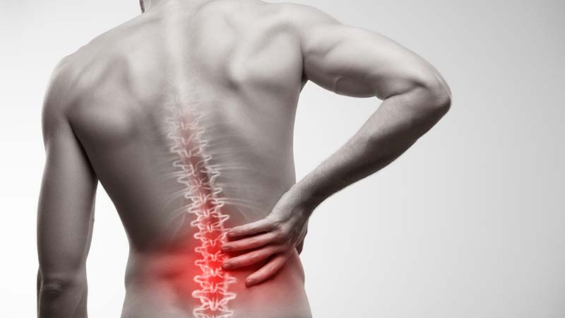 7 Easy Home Exercises To Relieve Your Lower Back Pain